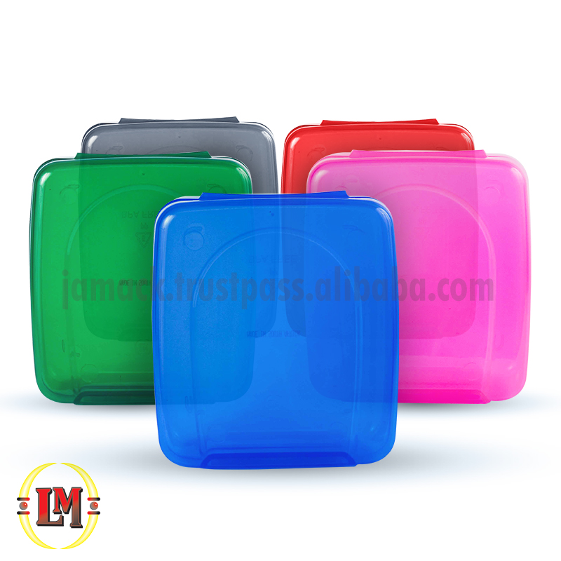 Clear Tinted Plastic Dagwood Lunchbox/Food Storage Box with Clip Lid