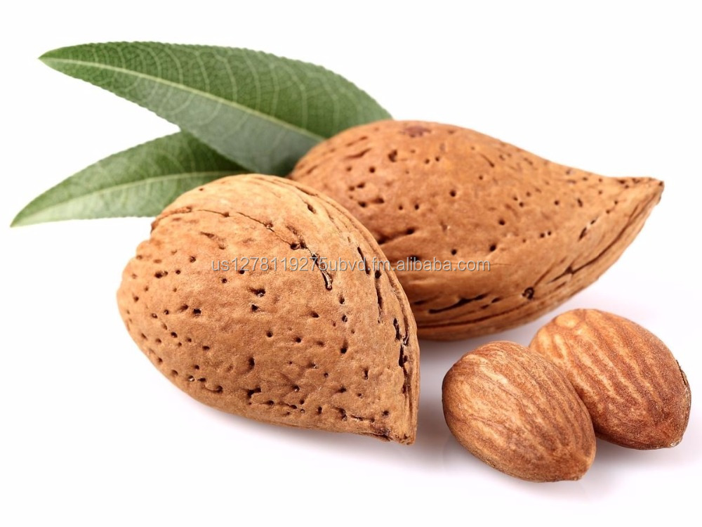 Best Quality Almond Kernel Nuts