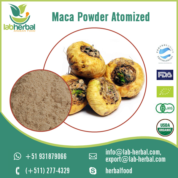 high Quality Organic Atomized Maca Powder to Improve Immune System