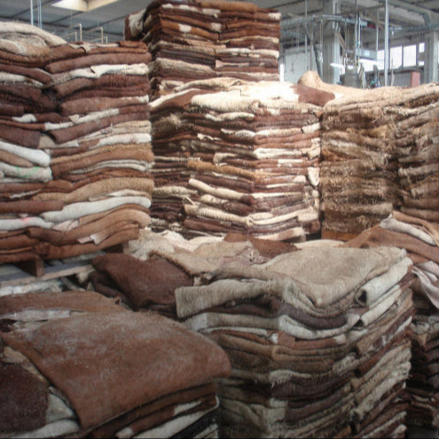Wet Salted Cow Skin / Dry salted Cow hides/ Dry salted Donkey
