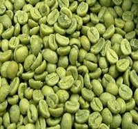 Buy Your Brazilian Green Arabica Coffee Beans
