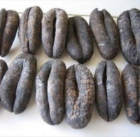 Dry sea cucumber best selling products in Canada healthy foods