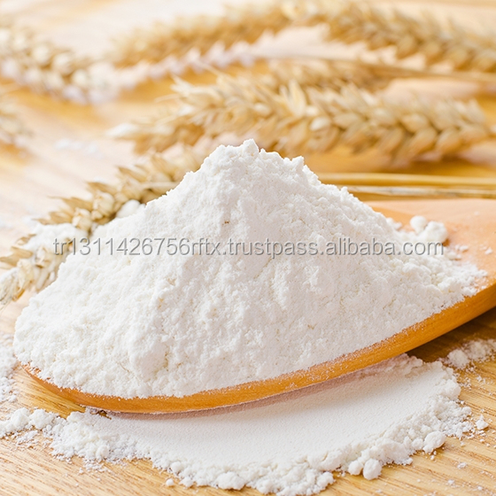 Best Price High Quality Wheat Flour Sale in Bulk or Bags