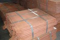 cathode copper 99.99% with good quality