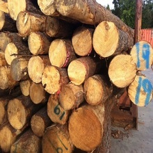 Top Quality Grade ABC Round Pine Logs for sale
