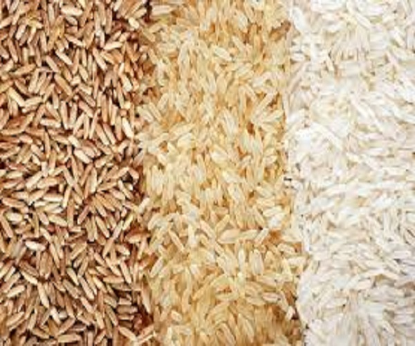 Wholesale Fresh Rice Cheapest Rice