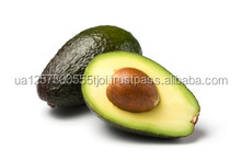 Fresh Avocados - Best Quality and Price