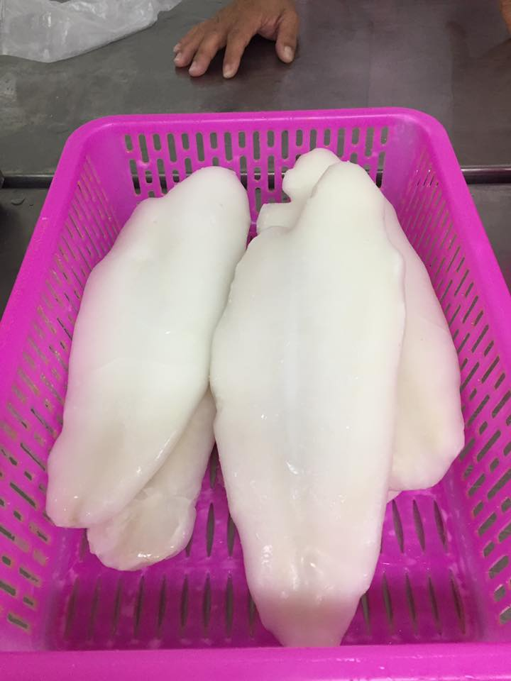 Frozen white pangasius fillets /steak/ red tilapia/ round scad/squid - CFR Busan port,Korea