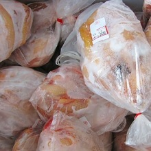 halal whole frozen chicken