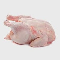 Halal Whole Chicken without head , neck , liver , feet / Chicken Wings, Midjoints, Kidney