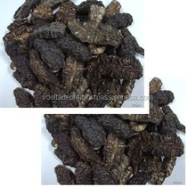 Dried Noni With Good Price