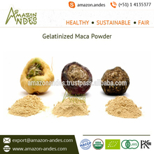 100% Maca Root Composition of Gelatinized Maca Powder for Body Balance