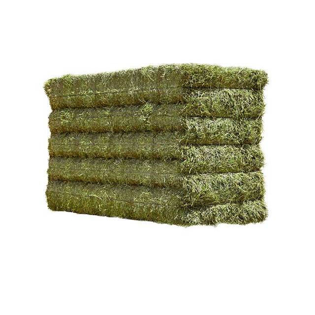 Buy high quality premium alfalfa hay, alfalfa hay price, alfalfa hay bales best offer