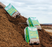 Peat moss Container Substrate