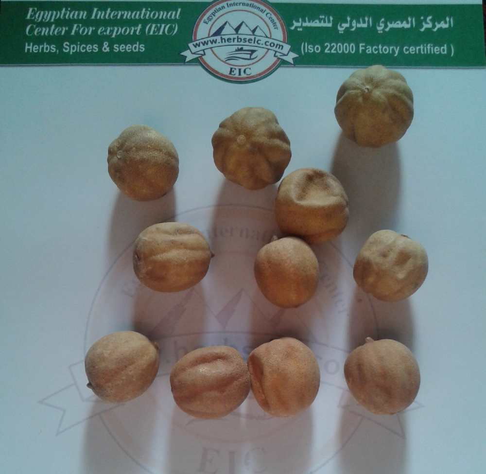 import Egyptian Citrus Limonum fruit