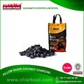 Reliable Exporter of Pillow Shape BBQ Charcoal at Wholesale Price