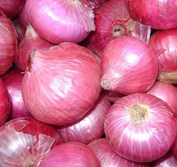Healthy Fresh Onion Ready For Export