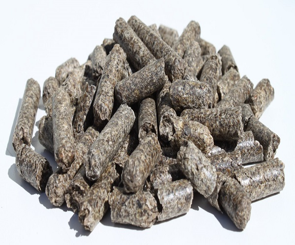 High quality Sugar beet pulp pellets Available