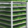 HYDROPONIC FARM FODDER GROWING SYSTEM FOR POULTRY