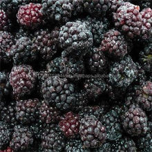 Grade A Fresh Strawberries, Raspberries, Elderberries, Cranberries, Blueberries, Blackberries, Blackcurrant,