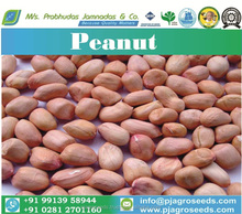 Peanut Suppliers From India