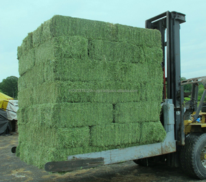 Grade A Primium Green Alfalfa Hay , Timothy Hay, Animal Feed for sale