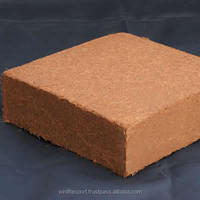 Long Time Moisture Retainer Coir Peat Available in 5 kg Blocks