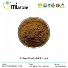 High Quality Coleus Forskohlii Extract