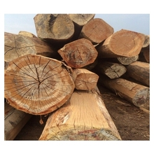 Hardwood Keruing log/sawn timber/lumber