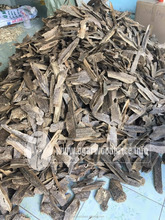 A PREMIUM CULTIVATED AGARWOOD/ OUD CHIPS - VIETNAM AQUILARIA CRASSNA FOR BURNING