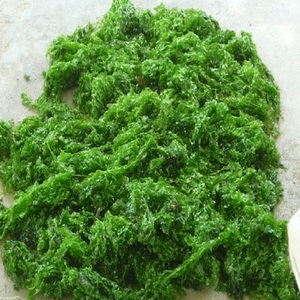 Premium Quality Dried Seaweed with Low Price