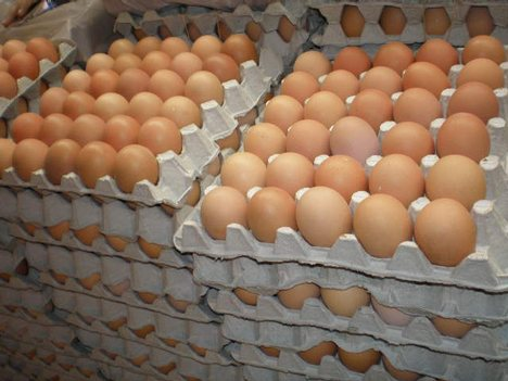 Quality Fresh Table Brown and White Eggs