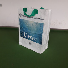 Best Price PP Woven Shopping Bag Made In Vietnam Evergreen