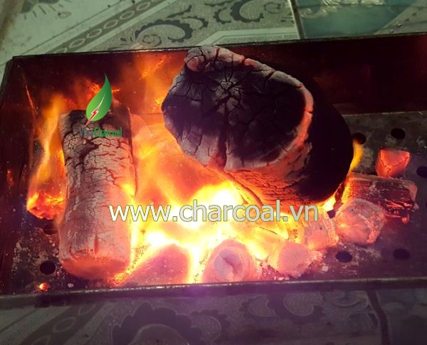 Coffee charcoal for BBQ and hookah shisha with good charcoal and attractive price
