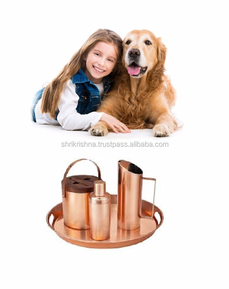 stainless steel Copper barware set