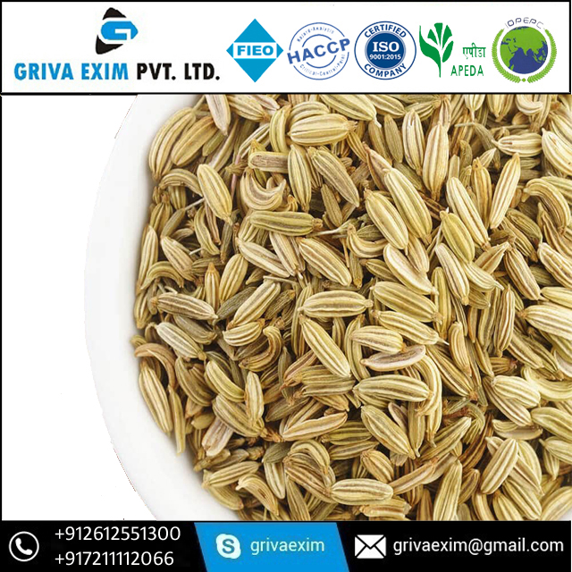 Fennel Seed Clean By Commercial Digger Machine