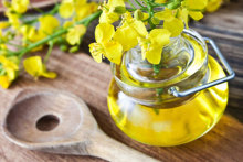 Premium Quality Crude / Refined Canola Oil / rapeseed available BEST PRICE