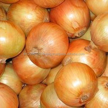 supplier lowest price wholesale new crop organic delicious nasik fresh red onion