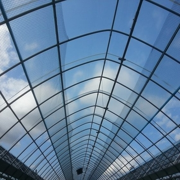 Cheap galvanized steel agricultural greenhouse