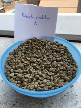 Fabulous Organic ground green coffee beans Robusta green coffee Bulk green coffee beans