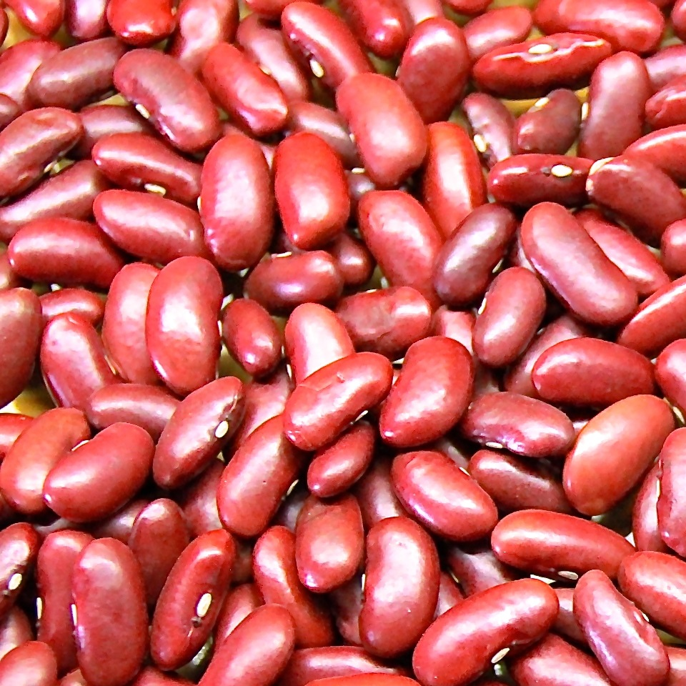 Red Kidney Beans - Long shape British 190-200 Count