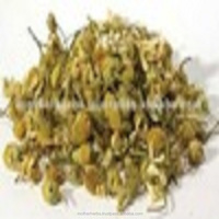 Natural Chamomile Dried Flowers For Medicinal Uses