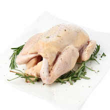 Best Quality Halal Frozen Whole Chicken