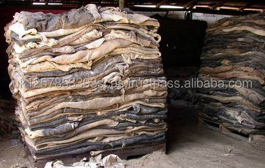 Premium quality Dry And Wet Salted Donkey / Horse Hides / Wet Cow Hides