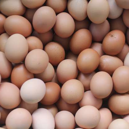 Fresh Brown Table Chicken Eggs