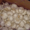 /product-detail/quality-pure-white-garlic-wholesale-price-62006338442.html