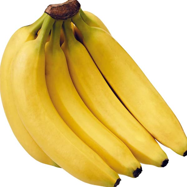 Class A Cavendish Bananas Available