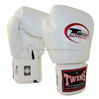 Twins Muay Thai Boxing Training Fighting