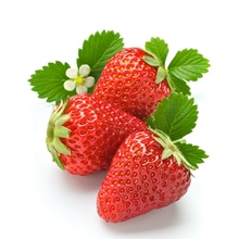 Fresh Strawberry Good Quality from VIETNAM