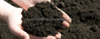 Azotobacter biofertilizer (high cell 10^8 with peat carrier in powder form)